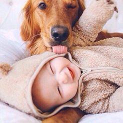 Schattige baby's